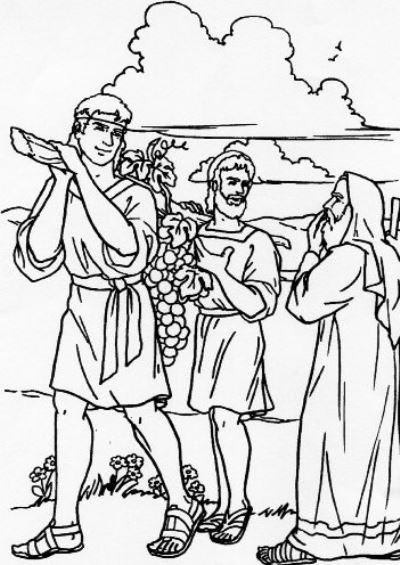 La Biblia Ilustrada   Niños